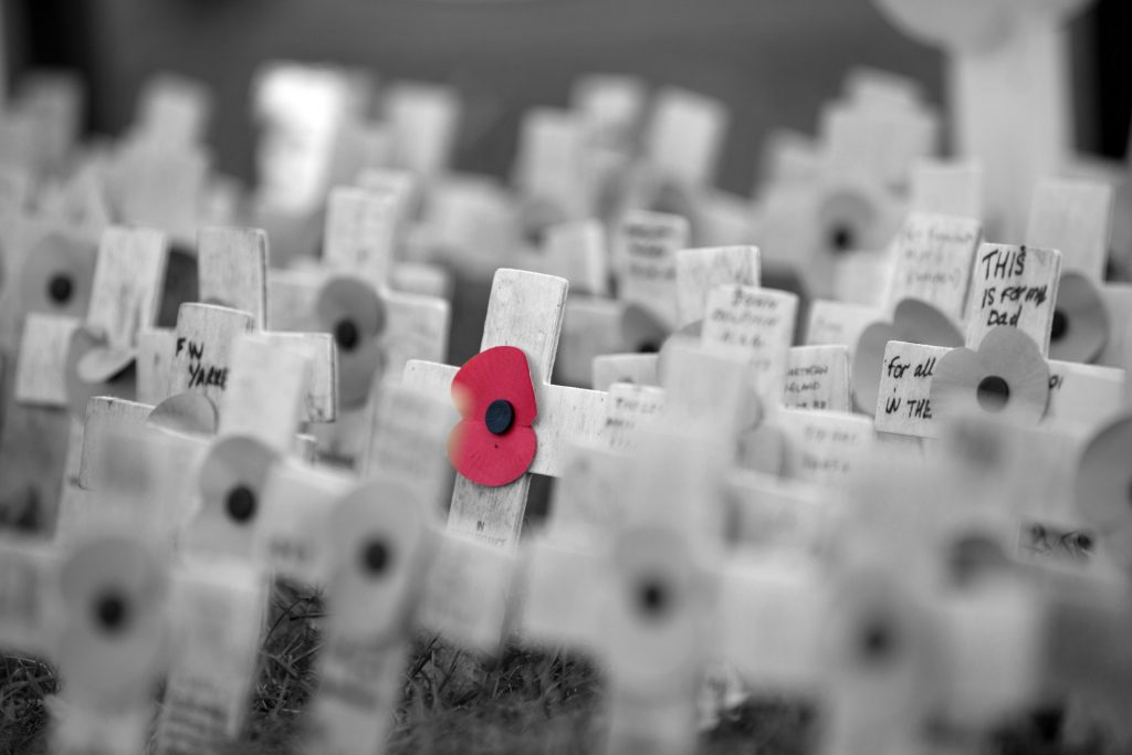 poppy & crosses